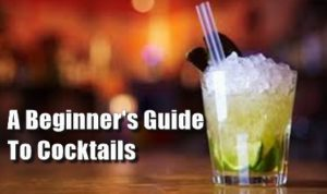 A Beginner's Guide To Cocktails