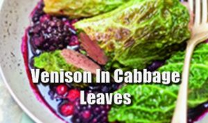 Venison In Cabbage Leaves