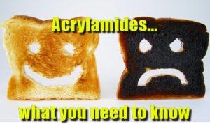 Acrylamides in Pub Food