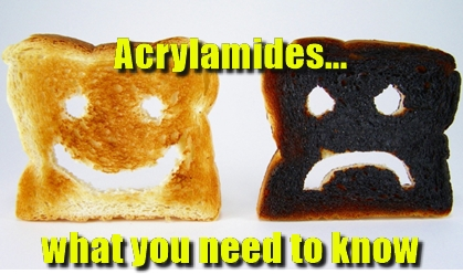 pub, food, kitchen, acrylamide, regulations, risk assessment, hygiene